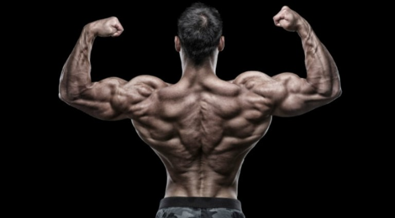 strong-back-768x425