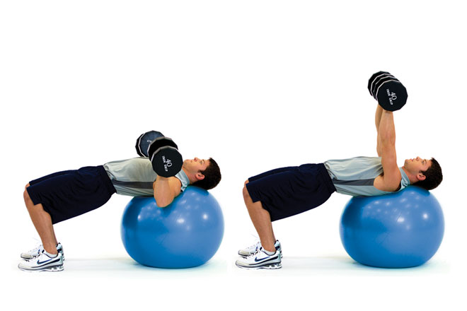 afm-winter-exercise-opt-dumbbellchestpress